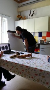 Project Murgeni 2015